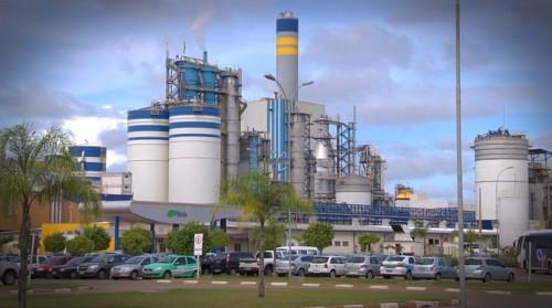 Indústria de celulose lança obra bilionária com geração de 40 mil empregos